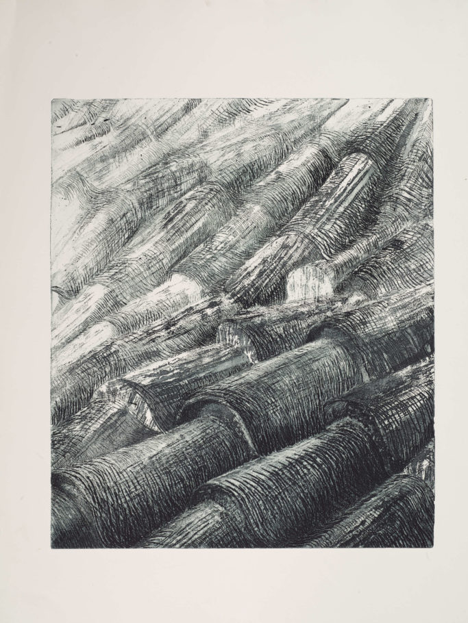 ROOF TILES 1 . IMAGE SIZE 58X49CM ETCHING . EDITION 35 . £500 U/F