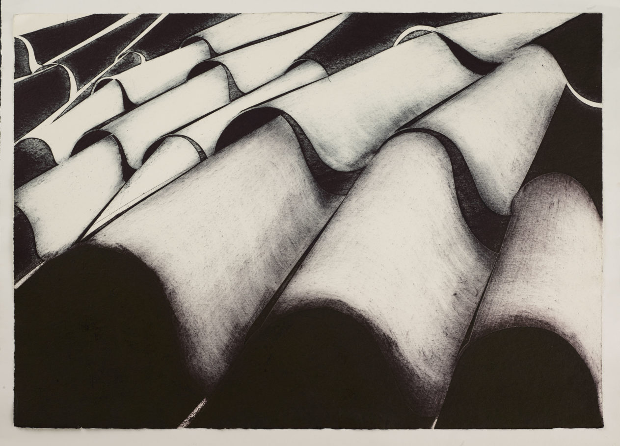 ROOF TILES 2 . IMAGE SIZE 58X82CM COLLAGRAPH . VARIED EDITION 3 . £600 U/F