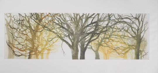 TREE FORMS 1